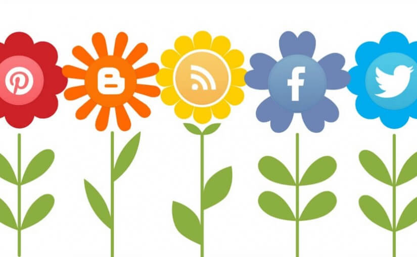 Redes Sociales para Turismo Rural