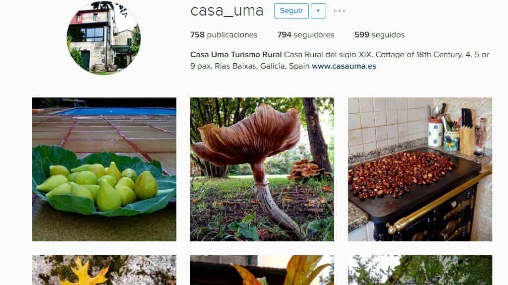 Instagram para Turismo Rural